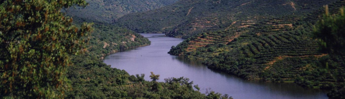 El Guadalquivir es el eje de todo producto turístico de la comarca de la Gran Vega